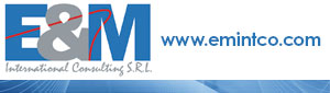 E & M International Consulting