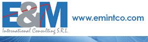 E & M International Consulting